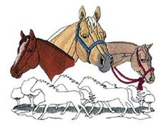 Quarter Horse Collage embroidery design