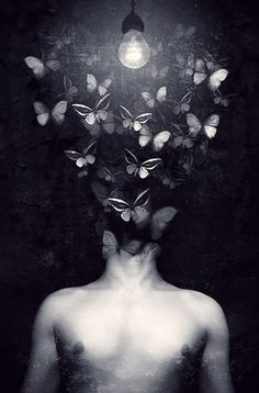 butterflies out the head