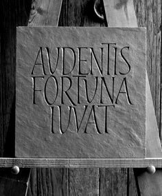 PlumTreeLetteringArts.: Roman Alphabet.
