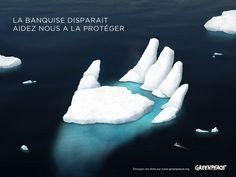 Création d'une campagne publicitaire sur la fonte de la banquise pour l' ONG Greenpeace ( Projet fictif)