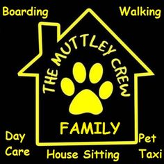 dog day care, dog boarding with no kennels. Dog walking and home visits also available. House Sitting, Dog Daycare, Family Day, Dog Boarding, Dog Walking, Dog Stuff, Dog Days, Pet Care, Space