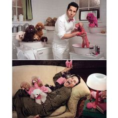 Paul Rudd and some pink poodles. I think this might be cruel...