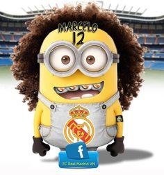 Minion Marcelo