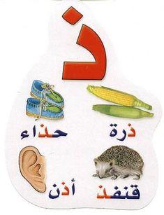 الحروف الهجائية في اول الكلمة- وسطها وآخرها - نلعب... ونتعلم... Arabic Alphabet Letters, Arabic Alphabet For Kids, Muslim Religion, Arabic Language, Learning Arabic, Baby Art, Funny Cats, Kindergarten, Kids Rugs