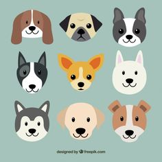 Cute dog breeds Free Vector