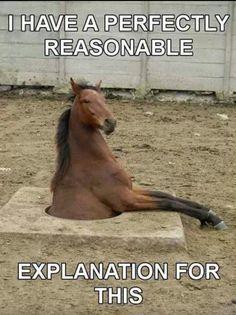 soo funny
