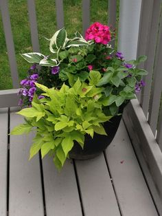 Love These Planters From Costco I Garden Now 400 x 300