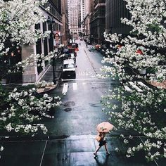 Trendy Photography Nature Spring New York City Ideas Beautiful World, Beautiful Places, Belle Villa, Concrete Jungle, To Infinity And Beyond, Disneyland Paris, Adventure Is Out There, City Lights, Oh The Places You'll Go