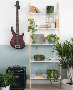 Repost from - Did you know we create content for brands? We had such fun working with with and their beautiful indoor plant collection for giveaway! If you are a plant lover make sure you enter. Love To Meet, Fun At Work, Ladder Bookcase, Houseplants, Shout Out, Indoor Plants, Shelves, Giveaway, Followers