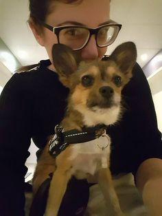 (Jeg selv er tidligere Falck-redder -ved hvor svært det er at komme rundt i kørestol og nu er der en pige som sidder i kørestol som mangler sin hund)