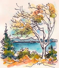 Sketchbook Wandering : Maine Tiny Autumn Series