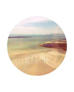 Imagine--Calamari Studio