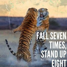 In this quote, Pi can relate because he was pushed with challenges and each time he got up and conquered it with courage and skill. Wisdom Quotes, Me Quotes, Motivational Quotes, Inspirational Quotes, Qoutes, Beast Quotes, Tiger Quotes, Lion Quotes, Wolf Quotes