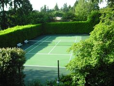 Hedges surrounding private tennis court