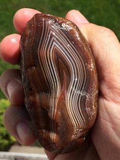 Want..... Wood Stone, Agate Stone, Opal Mineral, Jasper Rock, Lake Superior Agates, Rock Hunting, Petoskey Stone, Rocks And Gems, Rocks And Minerals