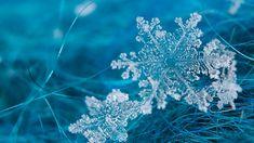 Merry Christmas! http://cdn.pcwallart.com/images/frost-background-wallpaper-4.jpg
