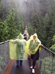 Trying to overcome my fear of heights on the Capilano Suspension Bridge- June 2013
