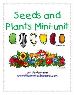 This mini-unit contains vocabulary cards, seed exploration, planting seeds activities, growing grass, plant journal, parts of a plant activity with...