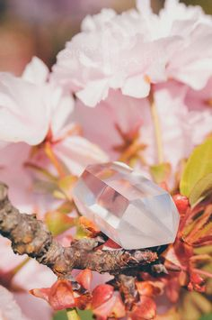 Peace begins with a smile :) Japanese Blossom, Clear Quartz Crystal, Handmade Jewellery, Cherry Blossom, Wordpress, Wedding Rings, Peace, Sugar, Engagement Rings