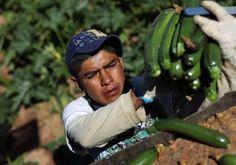 Consulados de México en EU celebran la Semana de los Derechos Laborales en el marco del 'Labor Day'