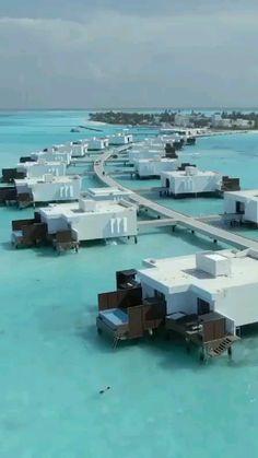 Maldives Villas, Maldives Honeymoon, Maldives Travel, Maldives Resort, Maldives Water Villa, Caribbean Honeymoon, Royal Caribbean, Beautiful Places To Travel, Beautiful Hotels