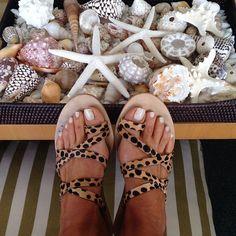She sells seashells on the sea shore #beachside by tashsefton