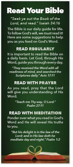 """Seek ye out the Book of the Lord, and read."" Isaiah 34:16 The Bible is our daily guide for life.To follow God's will, we must read it! Here are some suggestions to help you as you feed on God's Word."