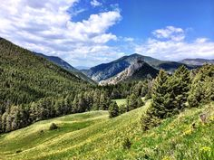Beaver Creek Road View | by Forest Service - Northern Region