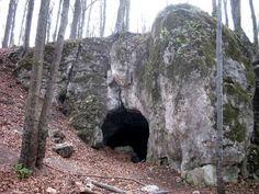 Пещера Медведя.jaskinia niedzwiedzia, kletno, Польша. В пещере находились останки почти 20 тысяч пещерных медведей, проживающих в этих местах около 300 000 лет назад. Это были самые громадные медведи, которые проживали когда-либо на нашей планете. Отдельные особи обладали длиной более 2-х метров, а высотой – все 4. Кроме медведей, в Яскине обнаружили скелеты пещерной гиены, пещерного льва, волков и нетопырей. Название для объекта долго не придумывали – медведь, так медведь.