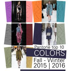 Top 10 Fashion colors Fall/Winter 2015-2016 by trendbubbles on Polyvore featuring Miu Miu, Michael Van Der Ham, Emporio Armani, Louis Vuitton and Viktor & Rolf
