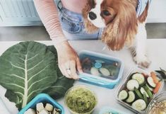 7 Meal-Prep Tricks the Fitness Gurus at Tone It Up Swear By Foods For Clear Skin, Clear Skin Diet, Tone It Up, Easy Meal Prep, Quick Meals, Freezer Meals, Food For Acne, Coffee Smoothie Recipes, Banana Chocolate Chip Muffins