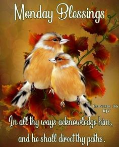 Monday Blessings~~J~ Proverbs Today Is Monday, Good Monday Morning, Cute Good Morning, Good Morning Flowers, Good Morning Wishes, Happy Monday, Blessed Morning Quotes, Morning Greetings Quotes, Good Morning Quotes