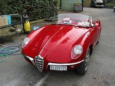1955 Alfa Romeo Giuletta Spider (Bertone)  I just LOVE this car....its insanely beautiful. One of Bertone's best ever, besides the GTV