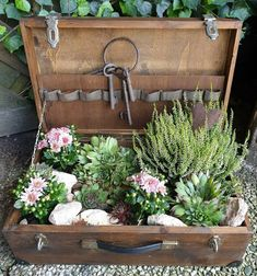 Succulent Arrangements, Planting Succulents, Planting Flowers, Small Garden Nooks, Diy Garden Decor, Garden Art, Container Plants, Container Gardening, Urban Garden Design