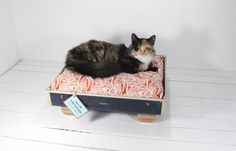 up-cycled suitcases into pet beds, so incredibly ingenious!