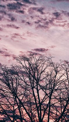 Tree, branches, sky, clouds Tumblr Wallpaper, Screen Wallpaper, Flower Wallpaper, Wallpaper Backgrounds, Iphone Wallpaper, Amazing Photography, Nature Photography, Sky And Clouds, Amazing Nature
