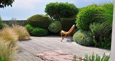 Outdoor Landscaping, Outdoor Gardens, Plants For Small Gardens, Australian Native Garden, Paved Patio, California Garden, Coastal Gardens, Italian Garden, Home Vegetable Garden