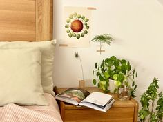 Hello plantshine - plant lover illustration / plant art / botanical wall decor / house plant print / pilea illustration Plant Art, Plant Illustration, All Poster, Begonia, Botanical Prints, Beautiful Artwork, House Plants, Illustrations Posters, Decor Styles