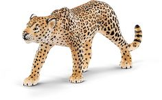 Amazon.com: Schleich South Africa Middle East Asia Leopard Toy Figure: Toys & Games