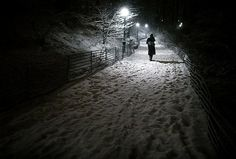Central Park, New York City~ Winter snow storm hits New York.  Source~NY Daily News