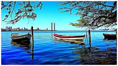 Brasília Teimosa / Bacia do Pina / Recife - Pernambuco - Brasil