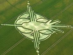 The Hummingbird Nazca Lines Peru Crop Circle UK 2009 - Psychedelic Adventure