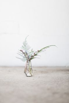 Foraged florals, tips for creating a flower arrangement from your yard. via @hejdoll