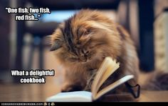 """""""One fish, two fish, red fish...""""  What a delightful cookbook."""