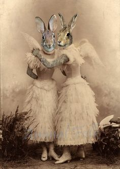 Items similar to Easter ANGEL BUNNY SISTER rabbit Art digital Collage anthropomorphic Print Victorian steampunk fashion Altered Antique Photograph winged on Etsy Photo D Art, Foto Art, Digital Collage, Collage Art, Costume Chien, Art Zen, Lapin Art, Rabbit Art, Bunny Rabbit