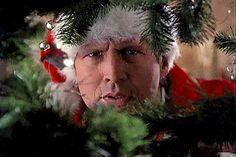 National Lampoon's Christmas Vacation. Funniest Christmas movie ever!