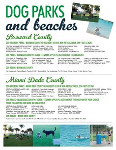 Dogs Parks and Beaches in Miami Dade and Broward. Parques y Playas de Mascotas en los condados de Miami Dade y Broward