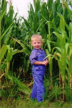 My sister and I used to play hide and seek in the corn fields...what fun!!!!!