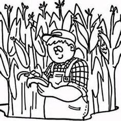 Taxonomical Corn Illustration 500x640
