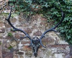 Hearne the huntress stag head art - Brave Boutiques Boutique Decor, Boutique Homes, Large Candles, Led Candles, Sculpture Art, Sculptures, Candle Branding, Metal Spikes, Stag Head